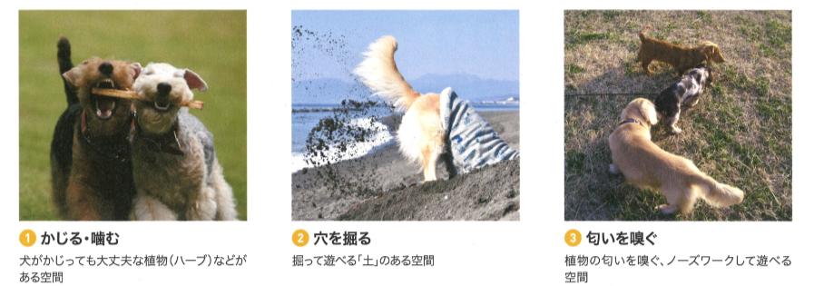 f:id:Yamatojktachikawa:20191024112104p:plain