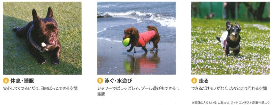 f:id:Yamatojktachikawa:20191024112107p:plain