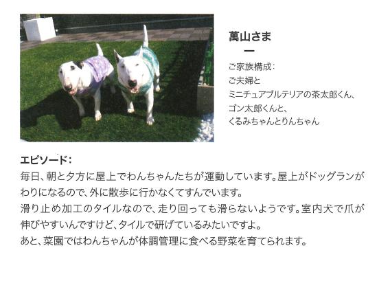 f:id:Yamatojktachikawa:20191123151625p:plain