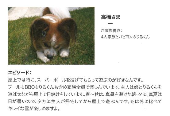 f:id:Yamatojktachikawa:20191123151631p:plain