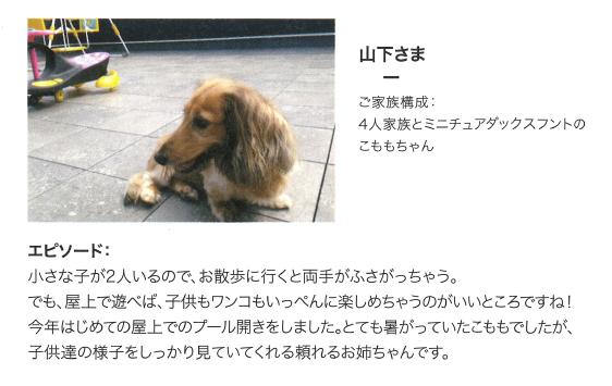 f:id:Yamatojktachikawa:20191123151634p:plain