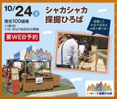 f:id:Yamatojktachikawa:20201010163227j:plain