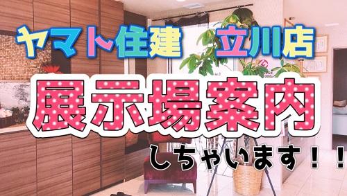 f:id:Yamatojktachikawa:20201130122515j:plain