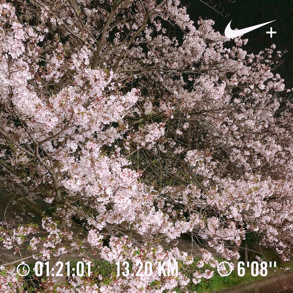 f:id:Yasumotomasatoshi:20190415234357j:image