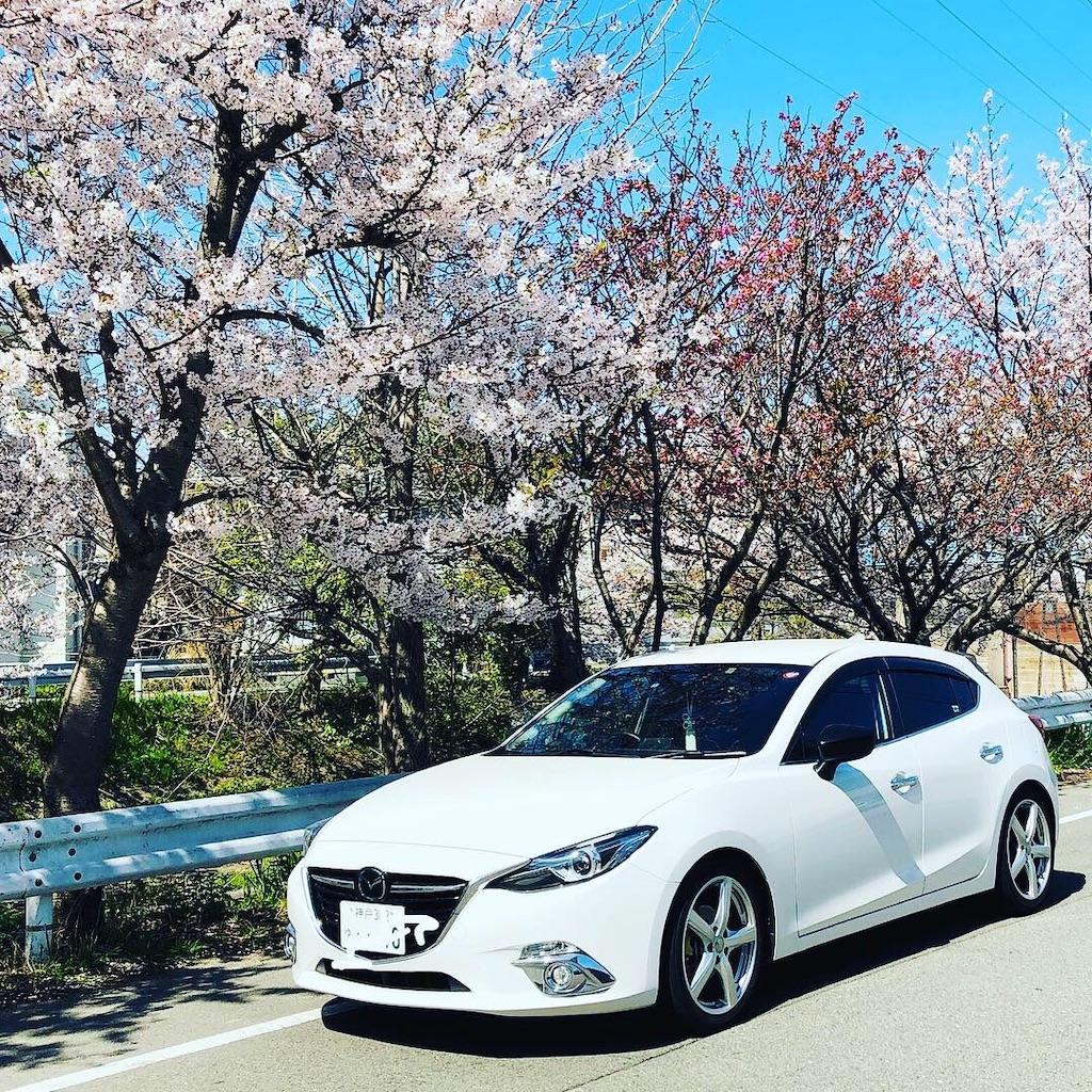 f:id:Yasumotomasatoshi:20190416000437j:image