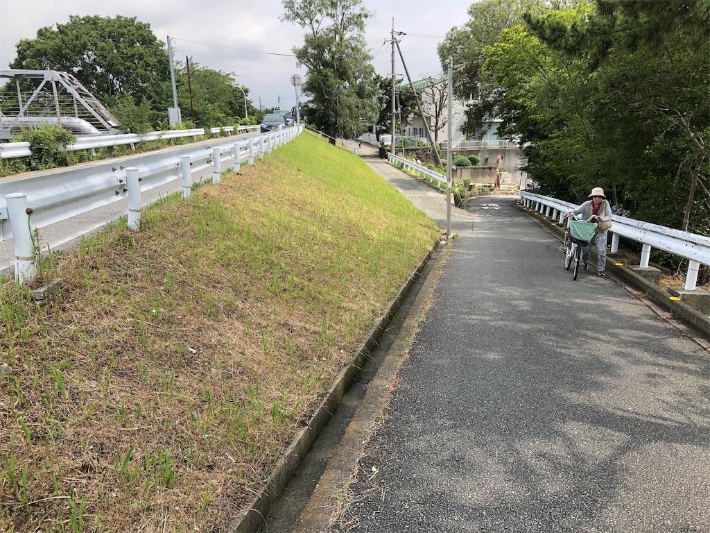 f:id:Yasumotomasatoshi:20190714174136j:image