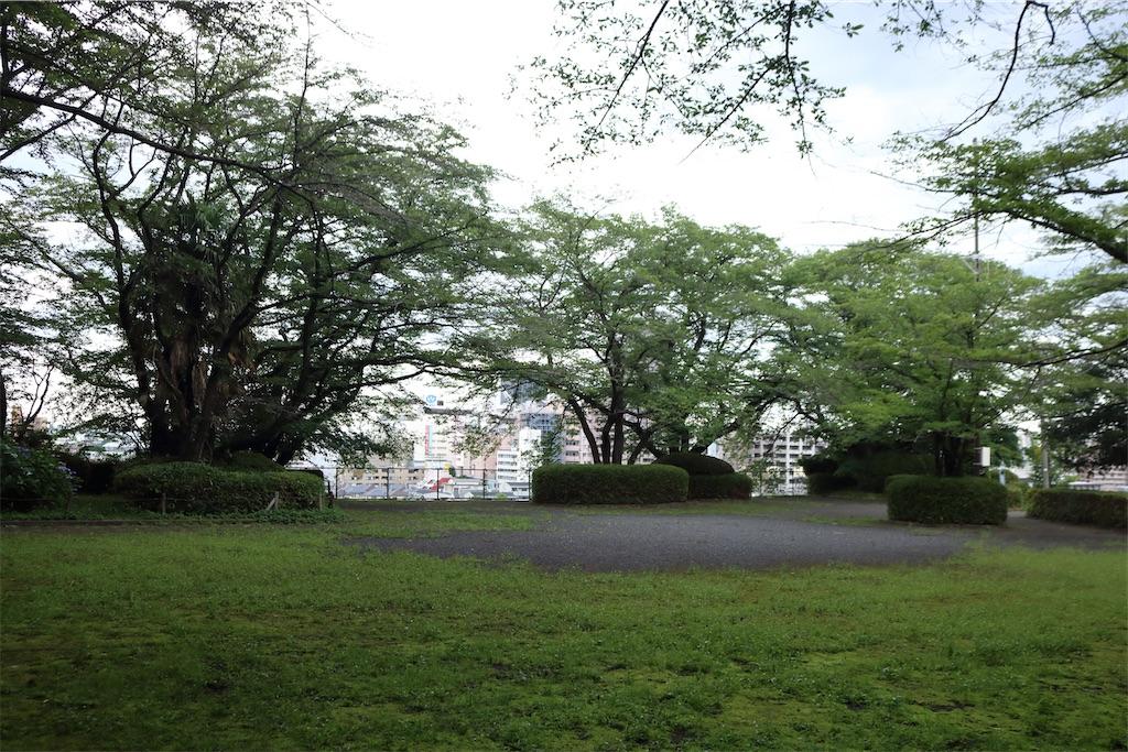 f:id:Yatsuhashi6014:20210621154535j:image
