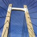 木場公園の大橋