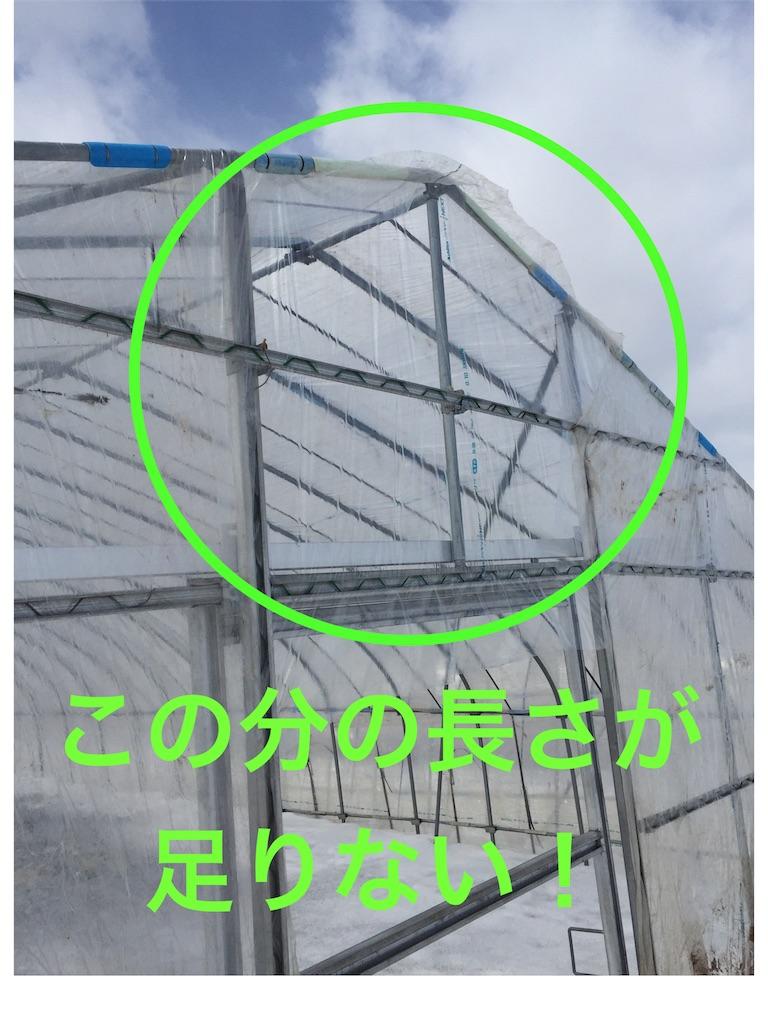 f:id:Yocos-farm:20170325222336j:image