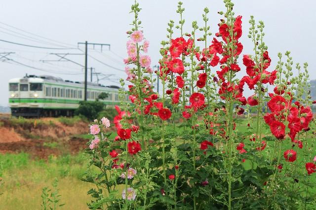 f:id:Yokohama_H021:20170626195530j:image