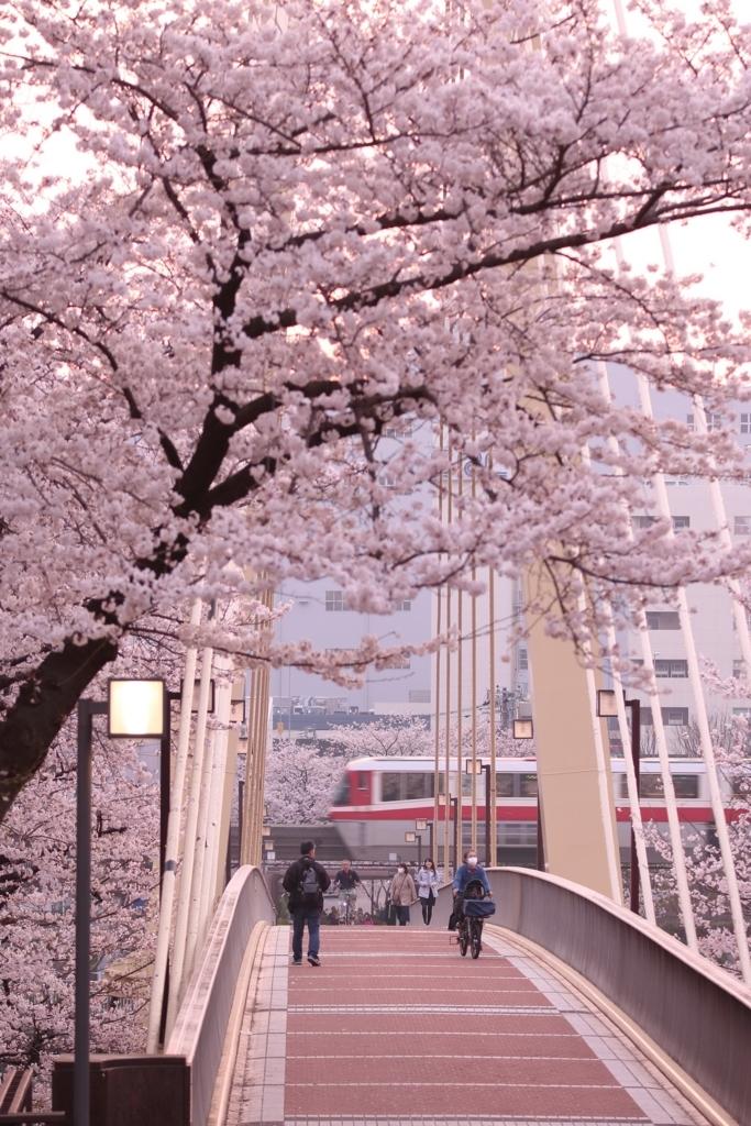 f:id:Yokohama_H021:20180406023844j:plain
