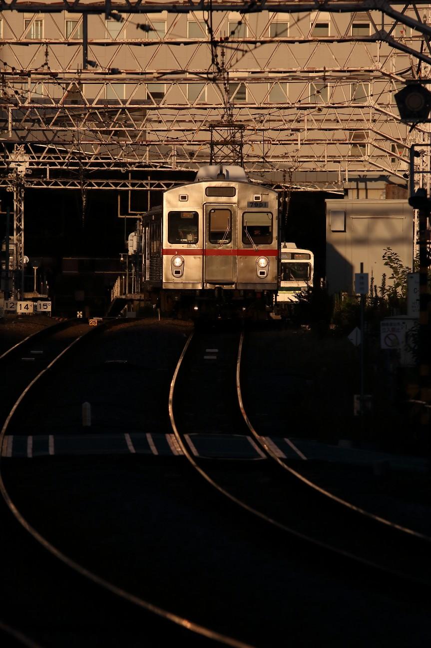 f:id:Yokohama_H021:20190216095321j:image