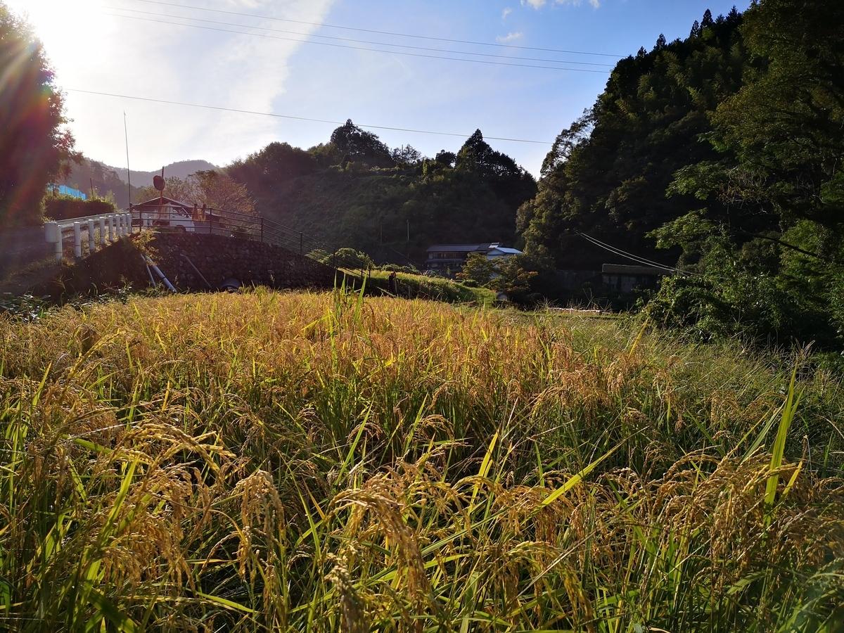 f:id:Yokumiru:20201023123639j:plain