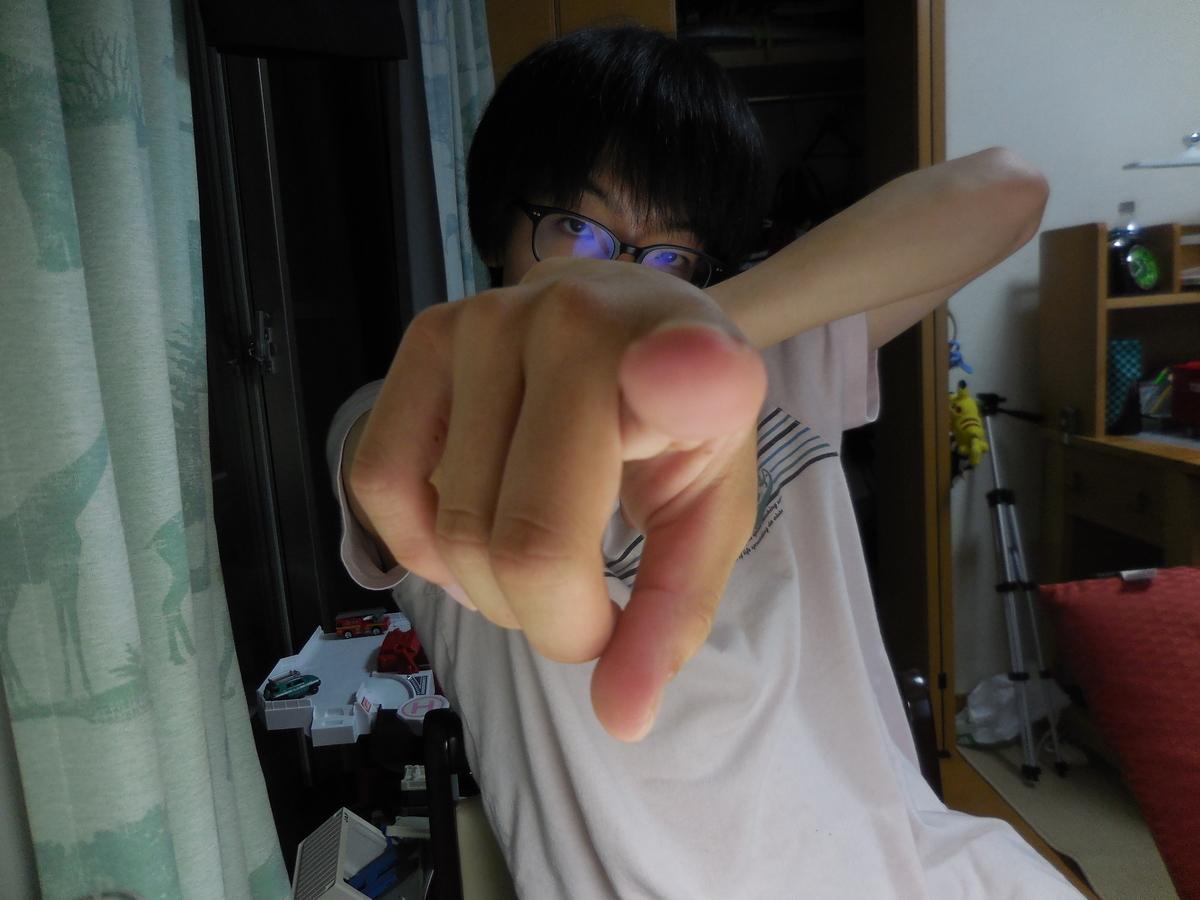 f:id:YosanoSanoRaoko:20210724181156j:plain