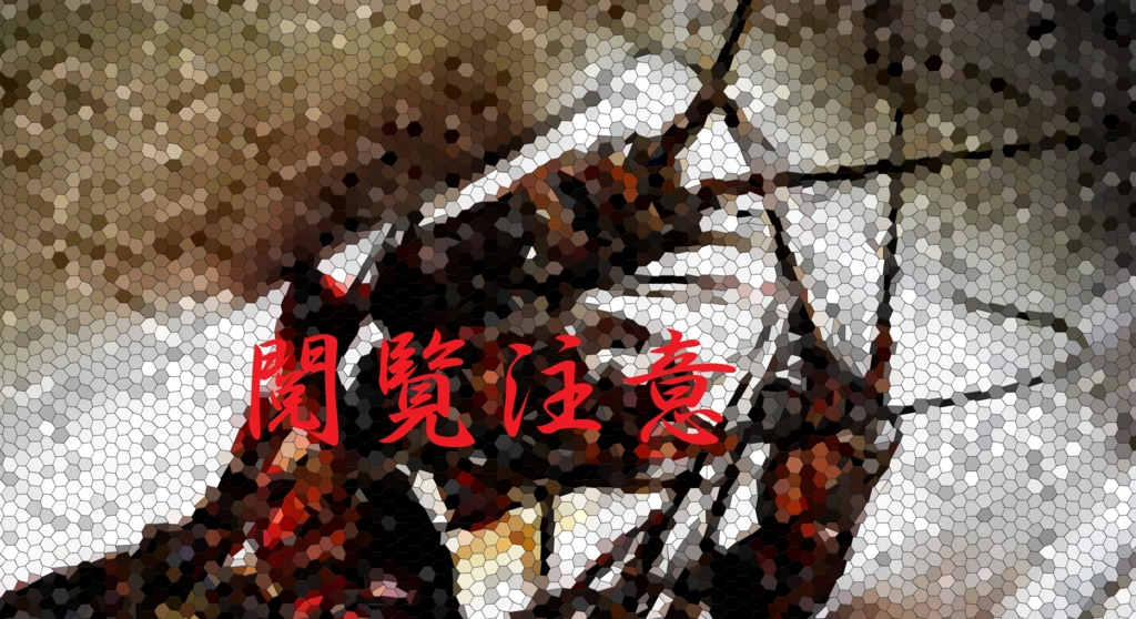 f:id:Yoshi4423:20150814174826j:plain
