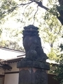 阿佐ヶ谷神明社200