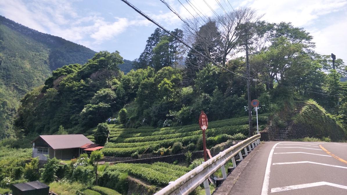 f:id:YoshihikoK:20210611004203j:plain