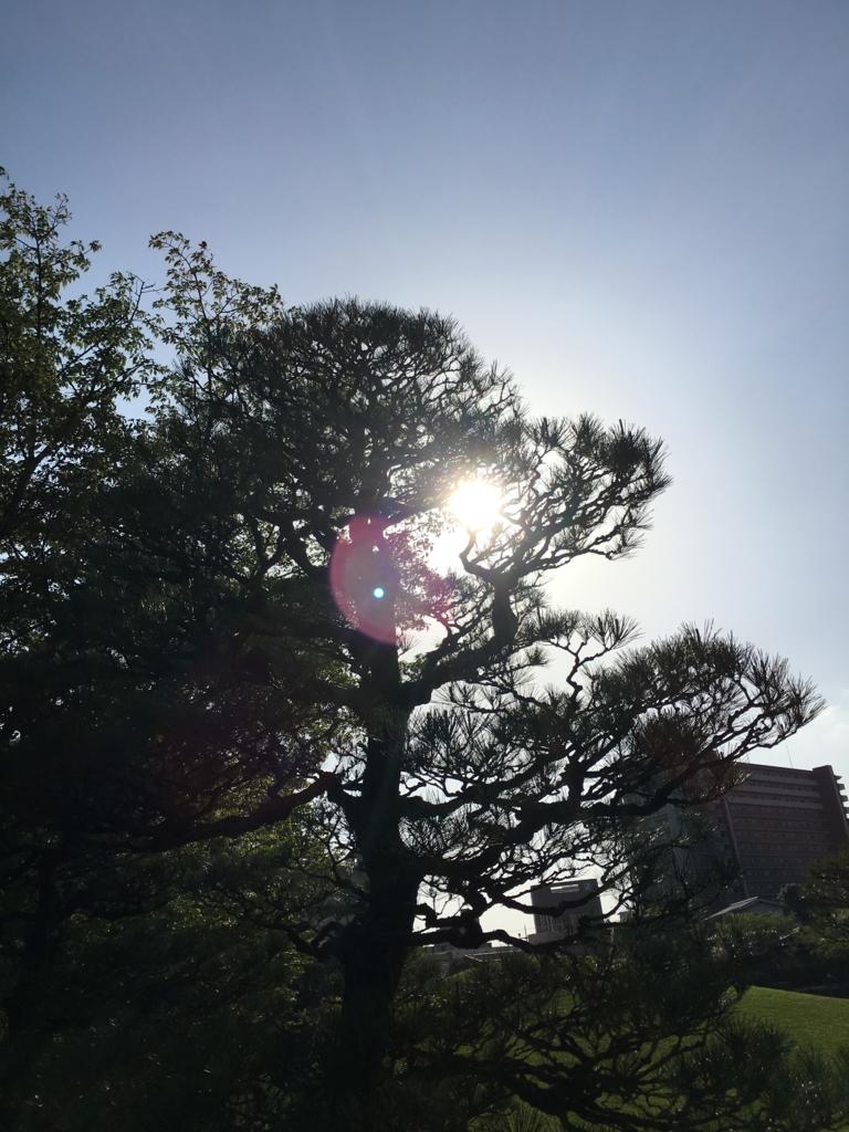 f:id:Yoshikochan:20170416145408j:plain