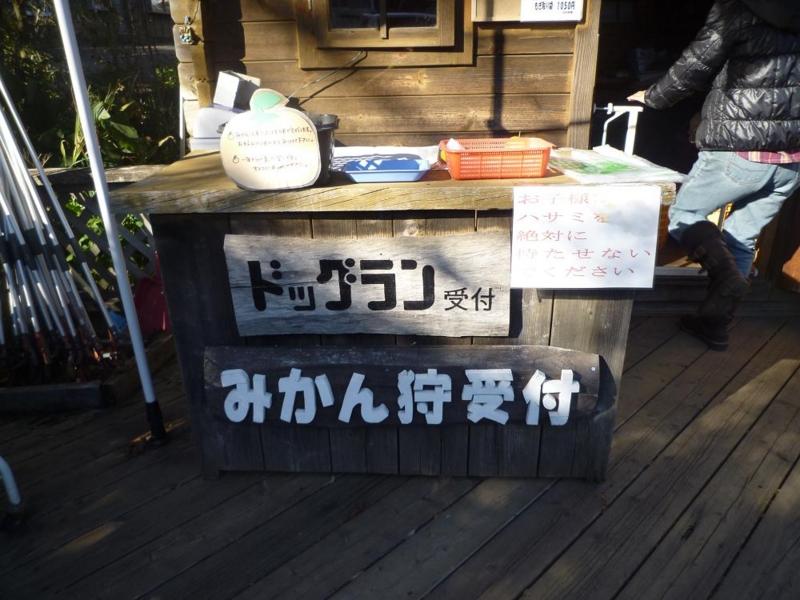 f:id:Yoshikoi:20101204131120j:image