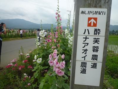 f:id:Yoshikoi:20110612095454j:image