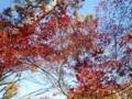 f:id:Yoshikoi:20111224095313j:image:medium