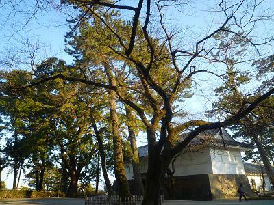 f:id:Yoshikoi:20120129151812j:image