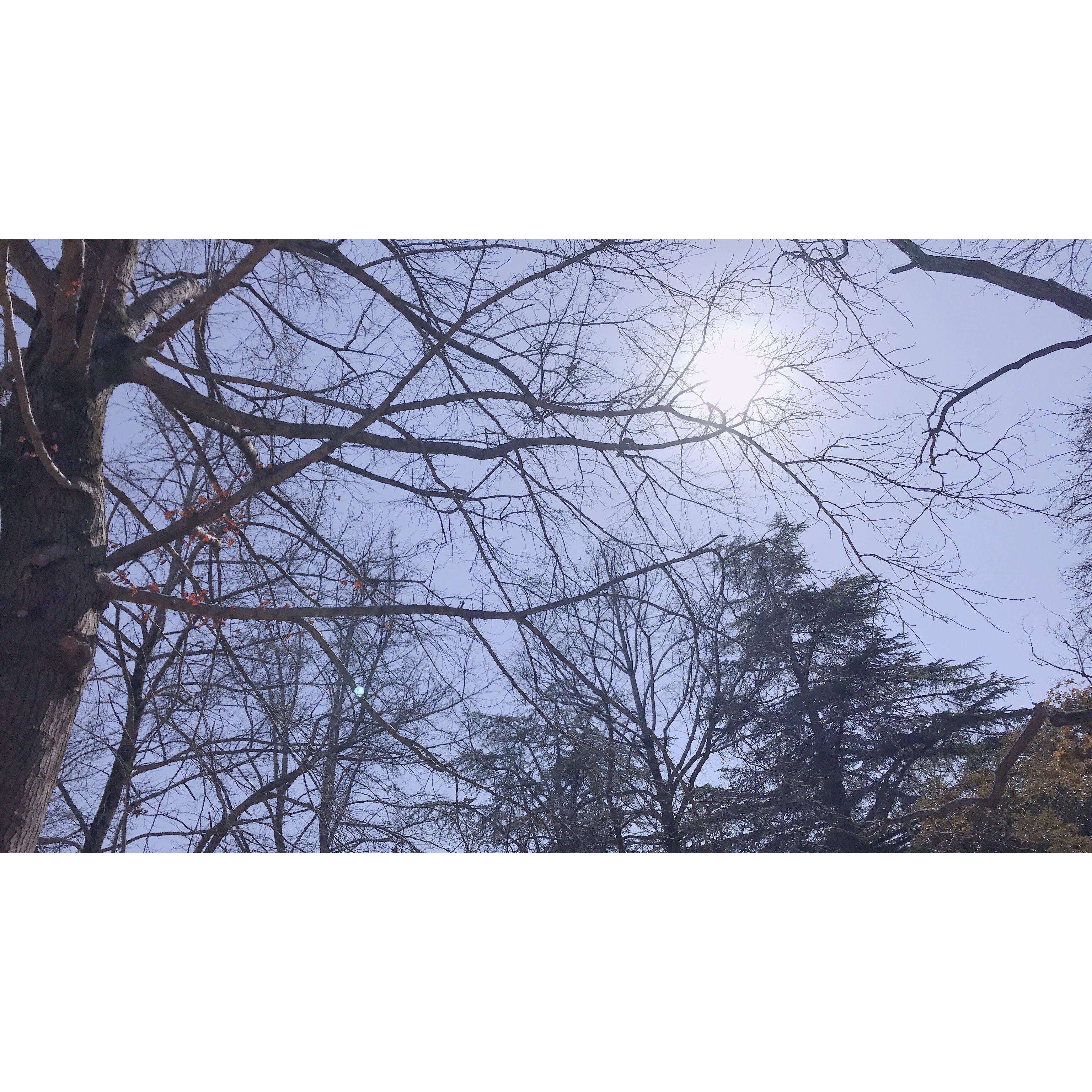 f:id:Yosuke0912:20180302132236j:image
