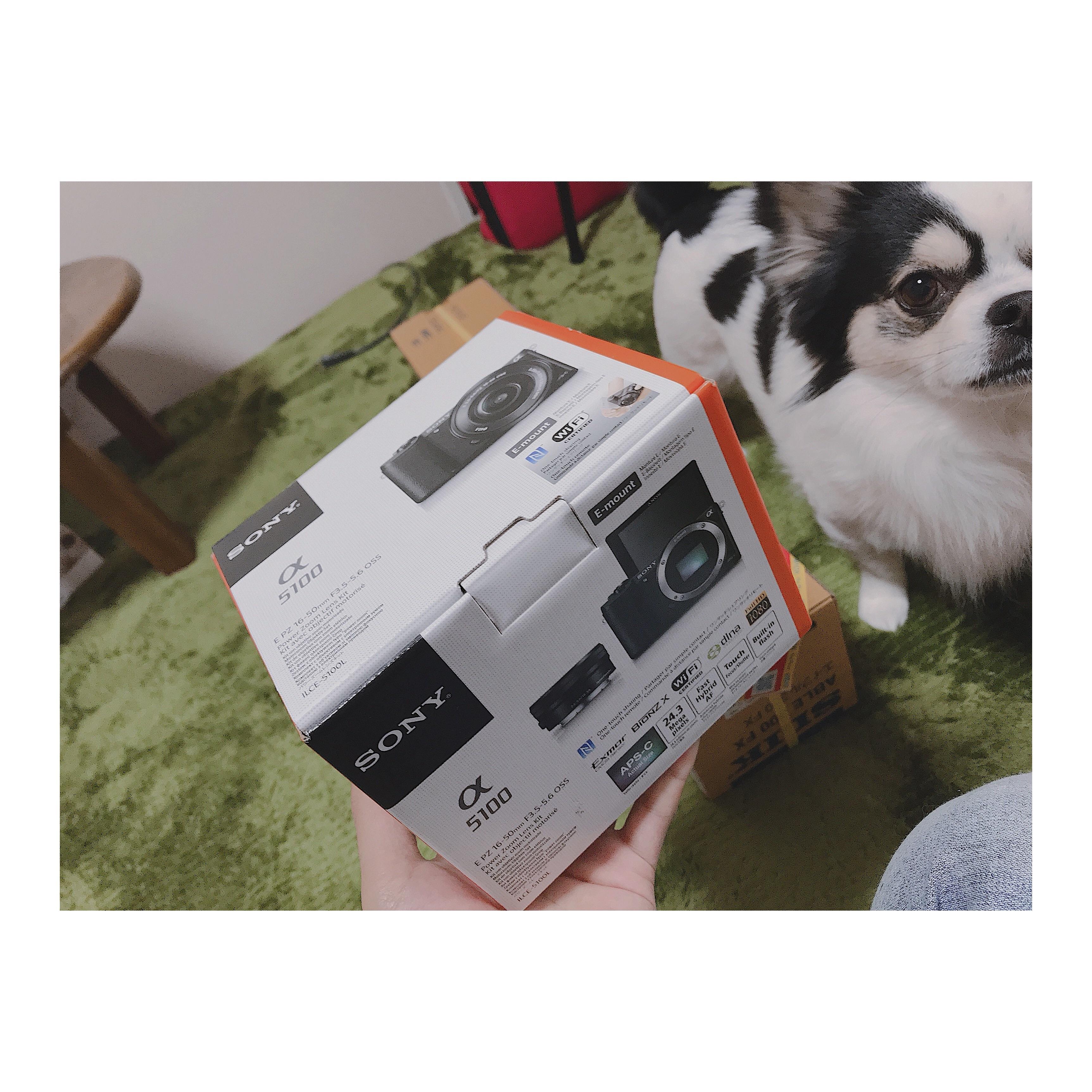 f:id:Yosuke0912:20180322192444j:image