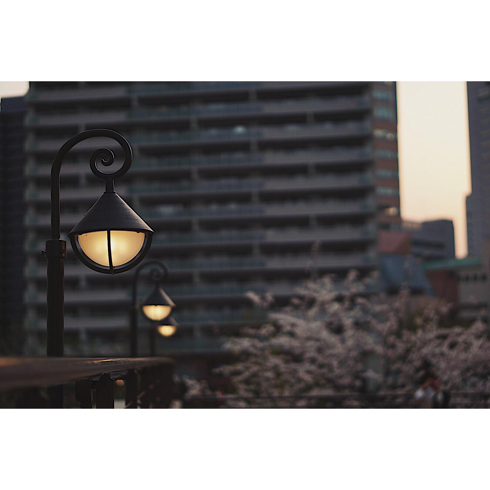 f:id:Yosuke0912:20180329182506j:image