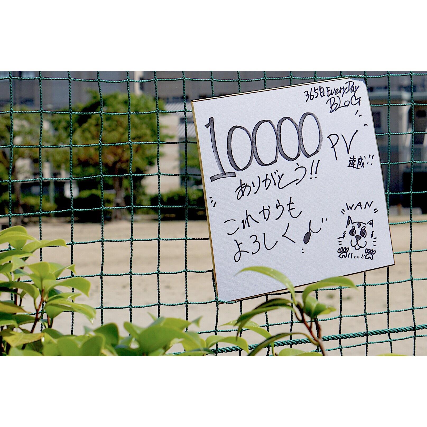 f:id:Yosuke0912:20180601202713j:image
