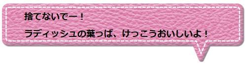 f:id:Yotoro:20200709055416j:plain