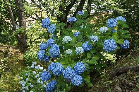 f:id:Youko:20120723092959j:image