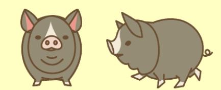 養豚場ミックス タムワース