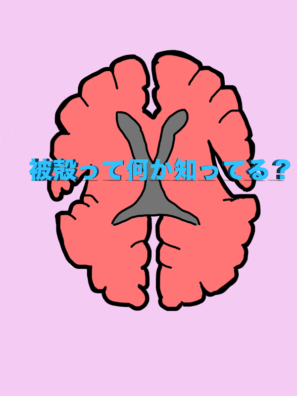 f:id:Yu-daiblog:20190101231519j:plain