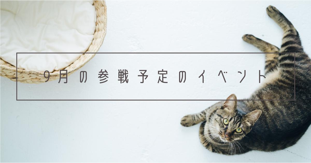 f:id:Yuichi48:20210824221542p:plain
