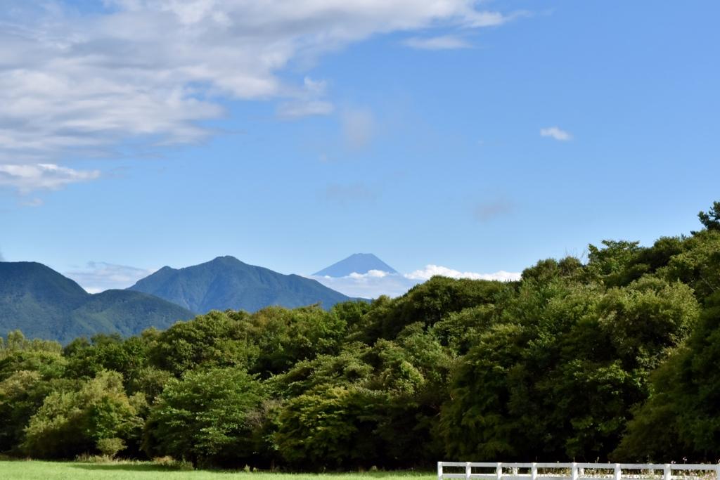 f:id:Yuichirokun:20160830232318j:plain