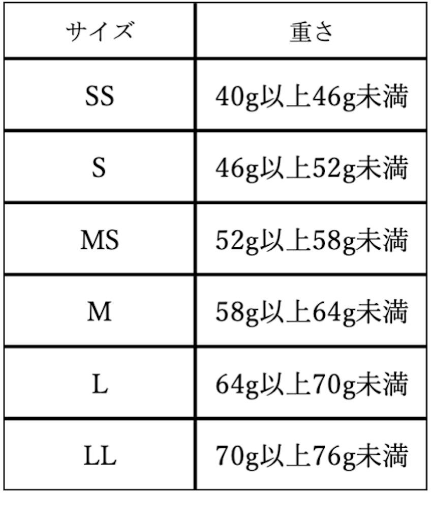 f:id:Yuikichi:20210414123324j:image