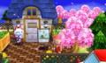 ピアノ教室・庭