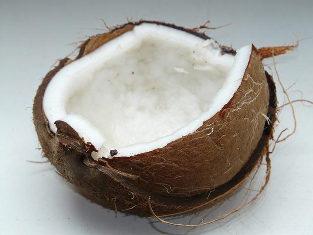 ココナッツ ココナッツオイル ココナツ洗剤 洗剤 ミニマリスト 天然 オーガニック 自然 アトピー かゆみ ニキビ