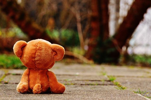 ベアー テディ 孤独な 愛 切望 ミス ぬいぐるみ 動物のぬいぐるみ テディー ・ ベア ヒグマ 子供 動物 毛皮で覆われたテディベア 子供のおもちゃ 甘い かわいい おかしい おもちゃ ミニマリスト 一人 独り