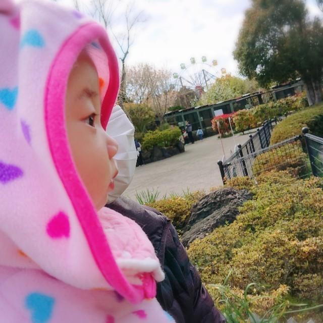f:id:YukiNOTE:20190404024004j:image