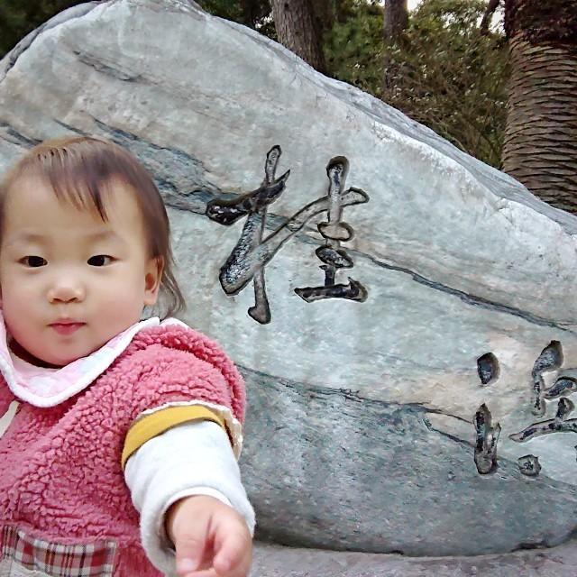 f:id:YukiNOTE:20200214013953j:image