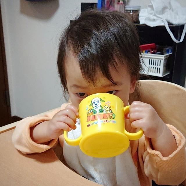 f:id:YukiNOTE:20200329004528j:image