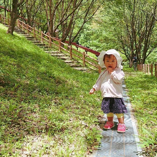 f:id:YukiNOTE:20200522010602j:image