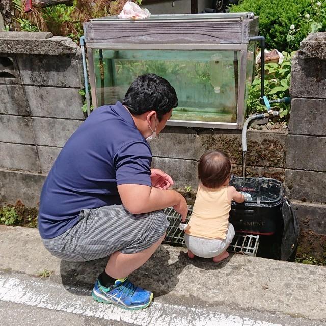 f:id:YukiNOTE:20200605222735j:image