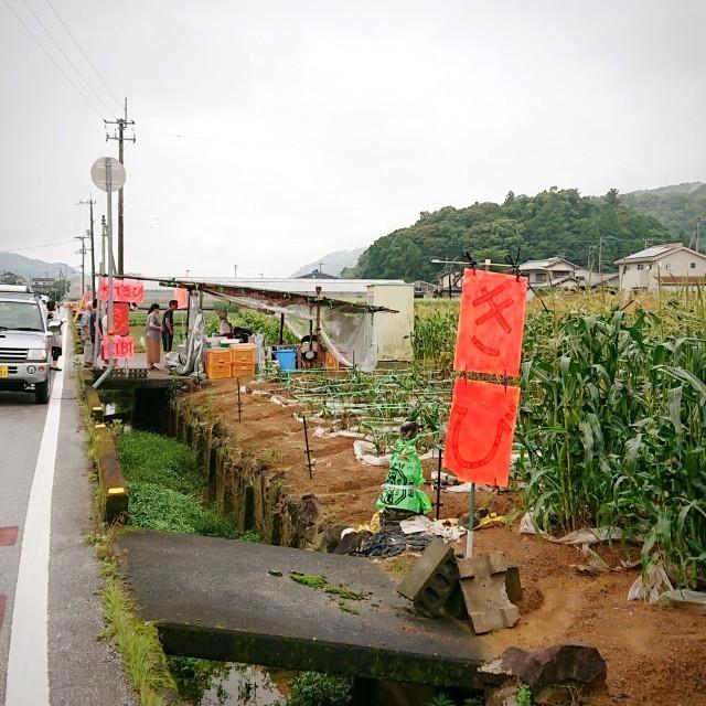 f:id:YukiNOTE:20200626055054j:image