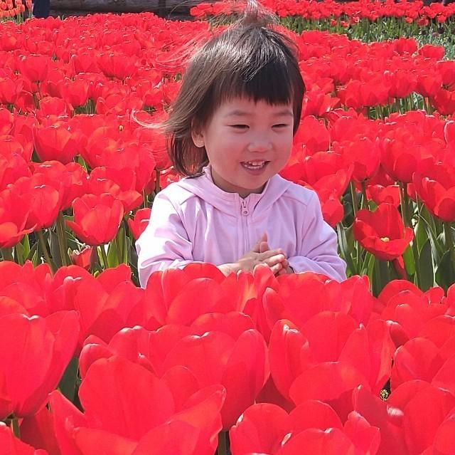 f:id:YukiNOTE:20210316235550j:image