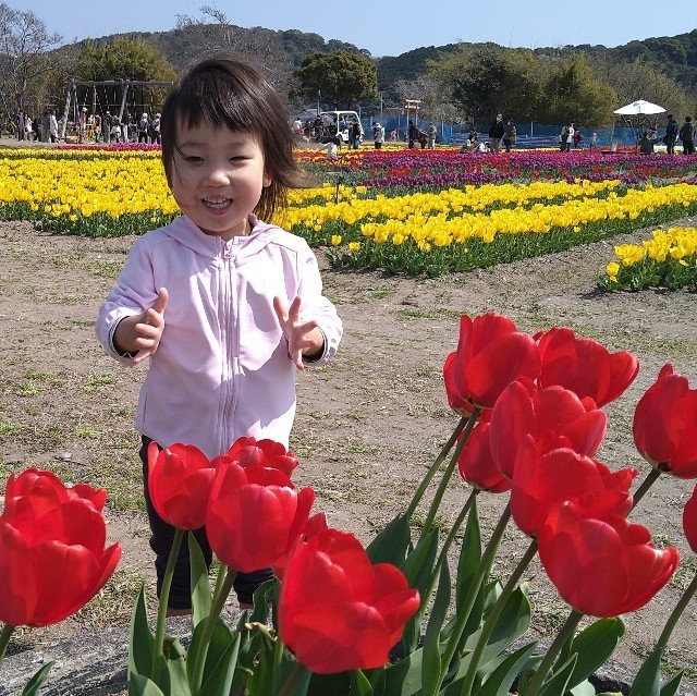 f:id:YukiNOTE:20210316235642j:image