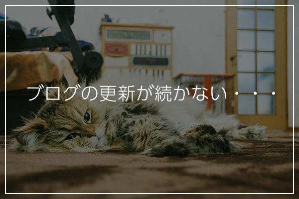 f:id:YukiNko:20180602234116j:plain