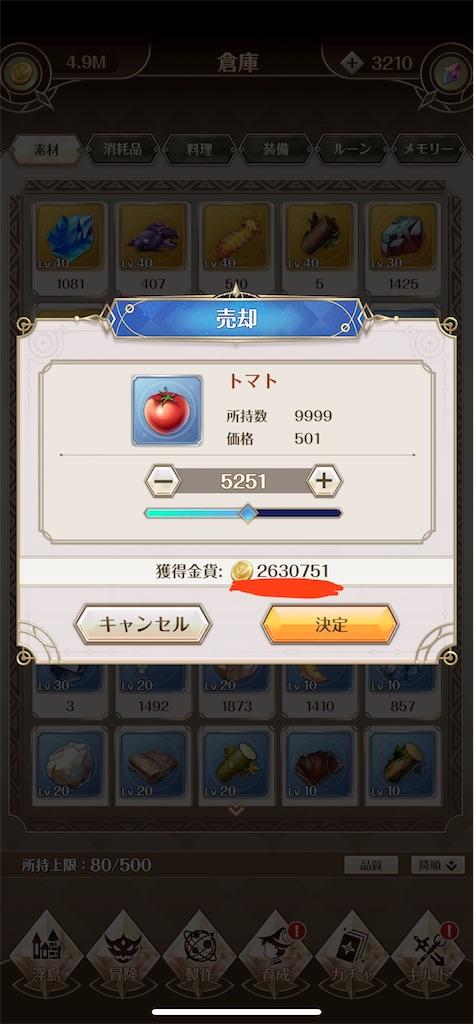 f:id:Yuki_ichinose:20200920172623j:image